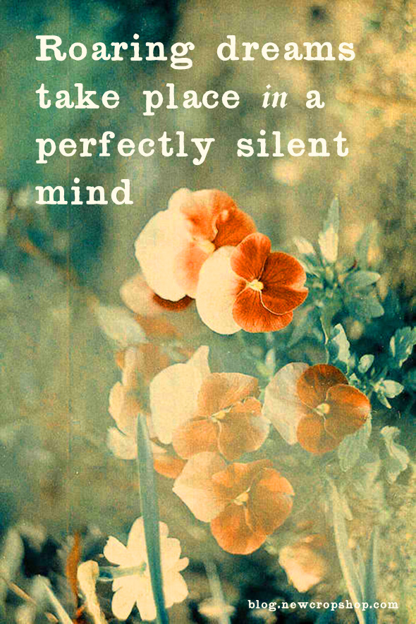 Roaring dreams take place in a perfectly silent mind