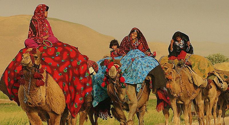 kuchi nomad tribe